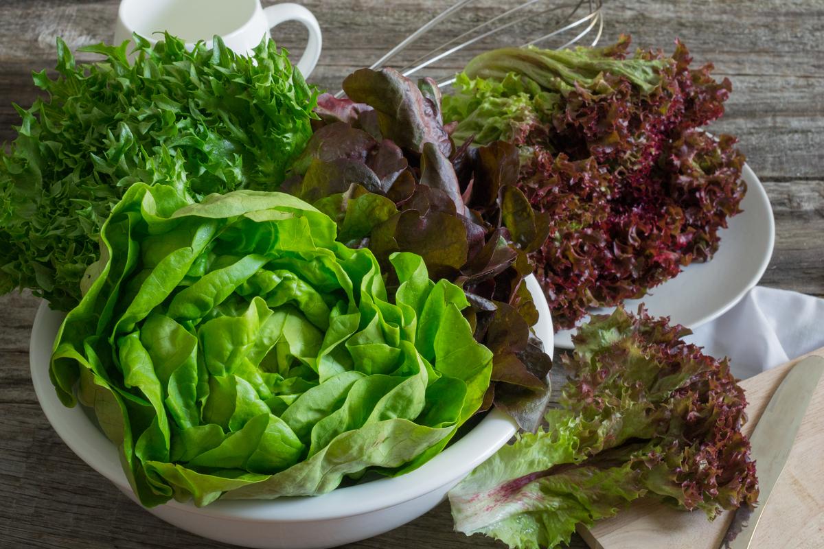 a saláta levelek segítenek a fogyásban